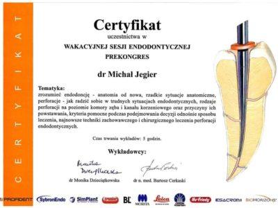 Dr Jegier certyfikat 7 - <span>dr n. med. Michał Jegier</span><br/>